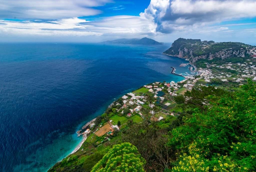 Capri sandberg