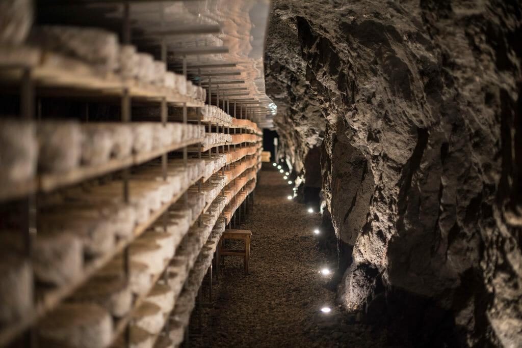 Dolomites - Cheese & Beer Tasting 4